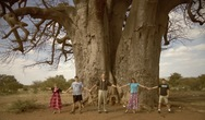 Young family with baobab tree in Zimbabwe